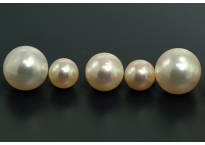 Pearl (Akoya)