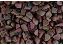 Rhodonite - tumbled stone